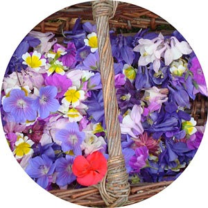 elisabeth heim - les fleurs d'Elisa