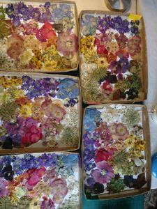 boites de fleurs
